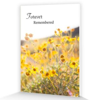 Nature/Scenic Memorial Cards